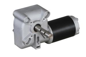 worm gear motor 1