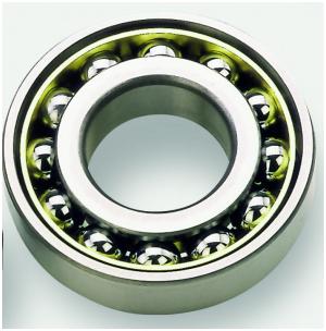 PSC-Motor-Bearing